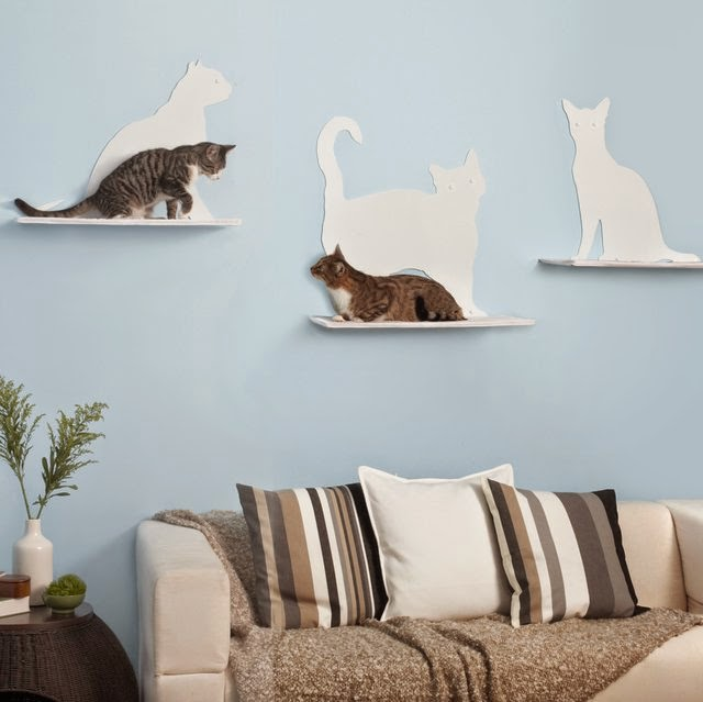 Cat Silhoutte Cat Shelves