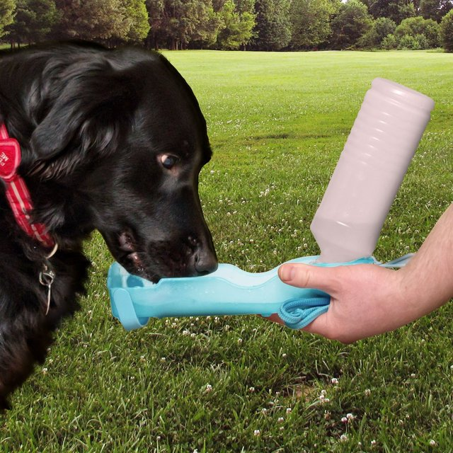 Handi-Drink Pet Water Bottle