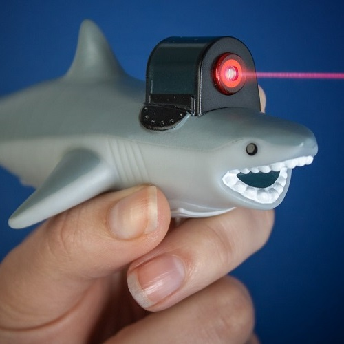 Shark With Frickin Laser Beam